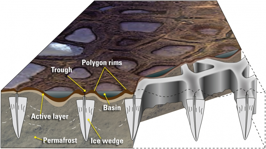 Formation Of Ice Wedges In Permafrost Arcus Internet