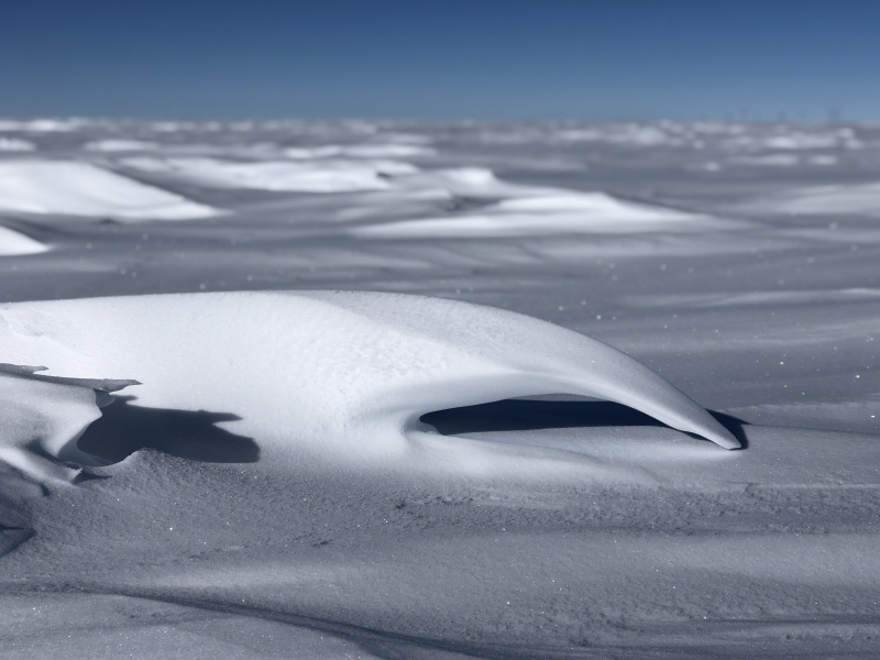"Lesley Anderson: ""The wind elegantly moves snow across the ice sheet and creates beautiful snow sculptures that look like waves."" Amundsen-Scott South Pole Station, Antarctica."