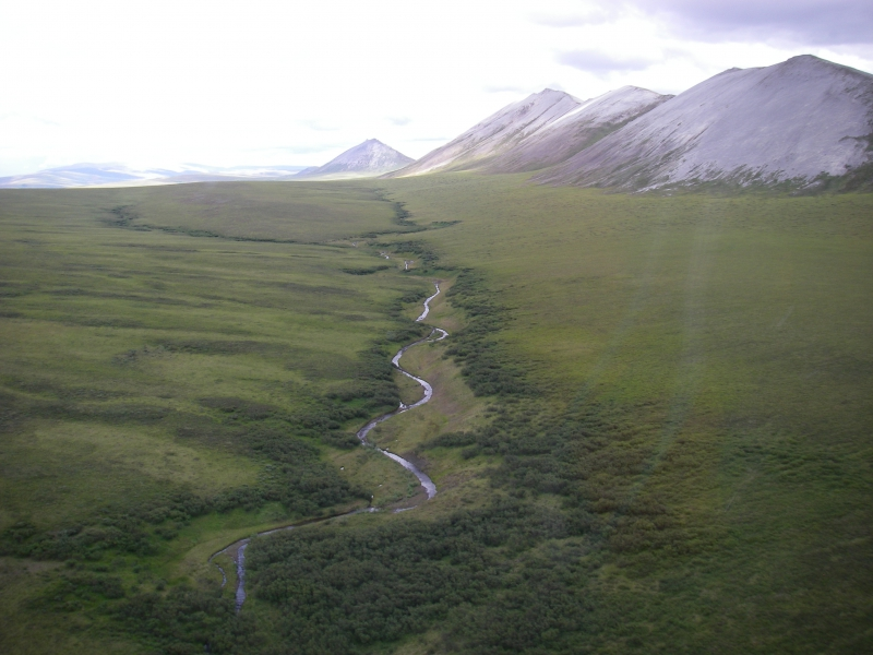 """Karl Horeis: """"We flew by this valley on our way back to camp. It's not far from where we have been excavating. In fact, we can see the other side of these gray peaks from Raven Bluff. Something about these landscapes makes me imagine lumbering mammoth and skin-clad ancient hunters."""" Somewhere between Raven Bluff and the Chukchi Sea (between Kivalina and Point Hope), Alaska.Credit to read: Photo by Karl Horeis (PolarTREC 2010), Courtesy of ARCUS"""