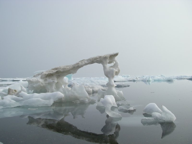 "Frank Kelley: ""I can't stop checking out the iceberg sculptures, so many great shapes and designs."" Barrow, Alaska."