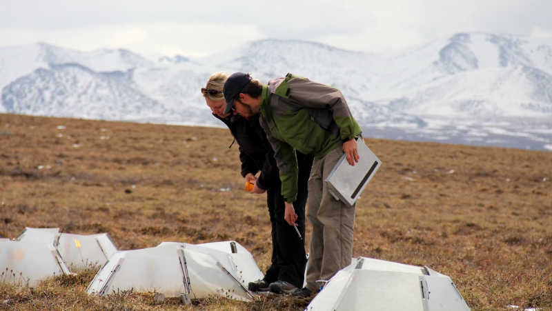 Melissa Lau and Matthew Simon take measurements at Imnaviat Creek, Alaska.